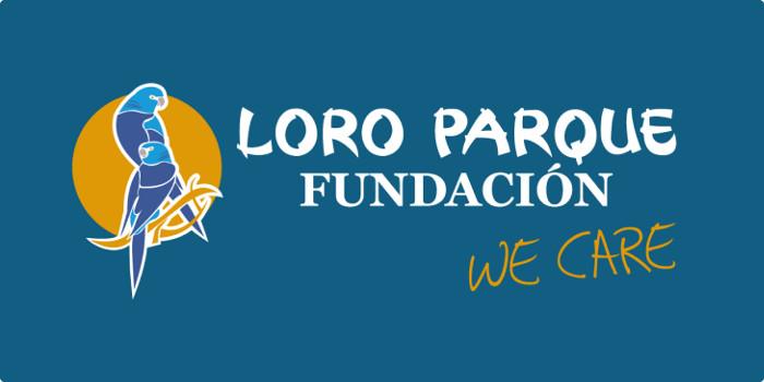 Banner FUND LORO P