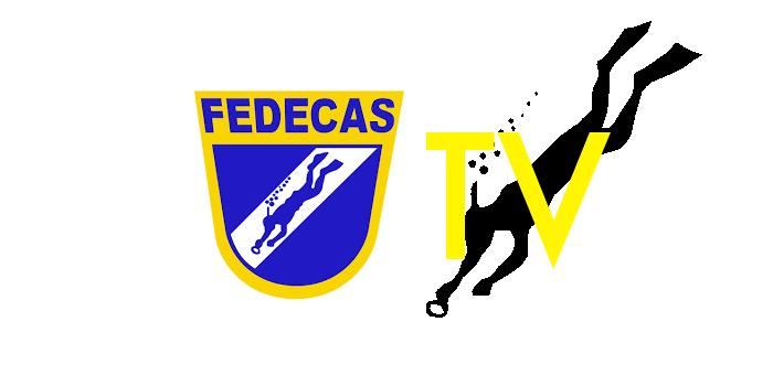 banner fedecas